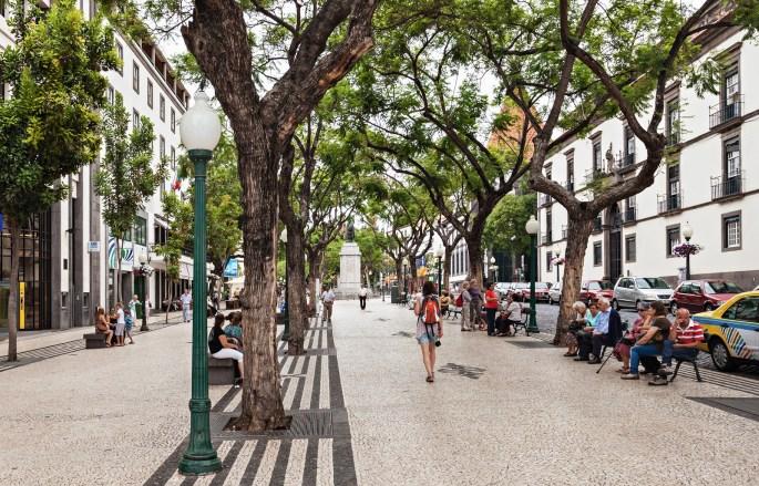 Street In Funchal