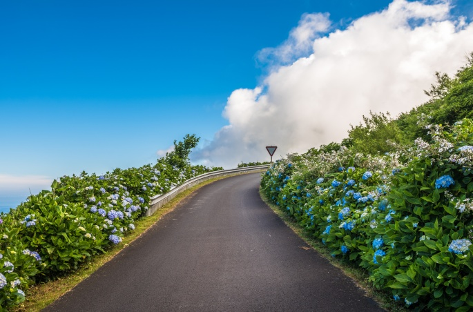Road to the sky, Flores Island, Azores, Portugal